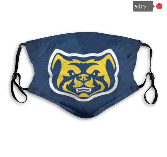 NCAA Michigan Wolverines 1 Dust mask with filter