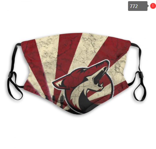 NHL Arizona Coyotes 3 Dust mask with filter