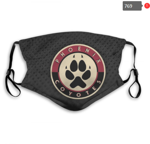NHL Arizona Coyotes 6 Dust mask with filter