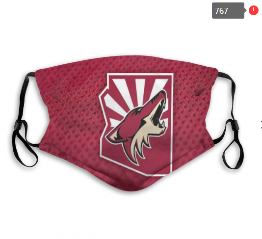 NHL Arizona Coyotes 8 Dust mask with filter