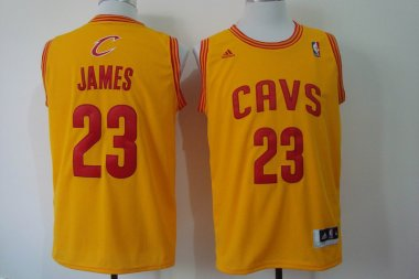 NBA Cleveland Cavaliers 23 James Gold 2014 Jerseys
