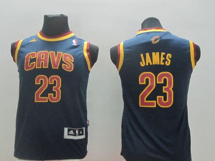 Youth NBA Cleveland Cavalie 23 Lebron James Blue 2014 Jerseys
