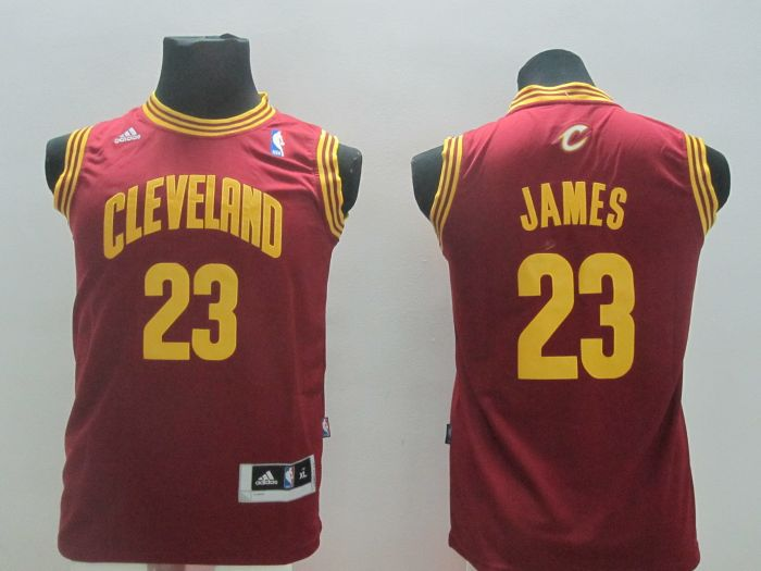 Youth NBA Cleveland Cavalie 23 Lebron James Red 2014 Jerseys